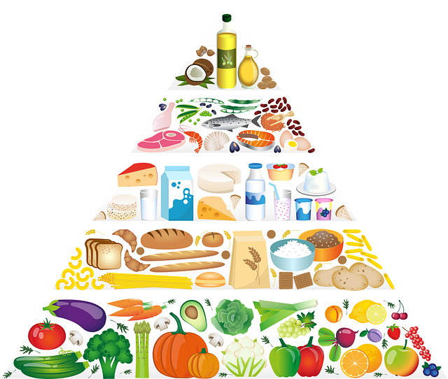 Pirâmide alimentar.